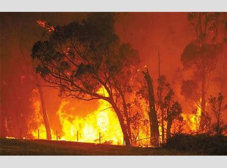 澳大利亚火灾最新进展 澳大利亚火灾刚澳洲火灾最新报道平息 两大灾难来袭数十所学校关闭